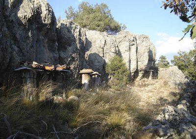 Colmenas en Buenache